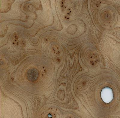 funier wurzelholzfunier reparieren. Black Bedroom Furniture Sets. Home Design Ideas