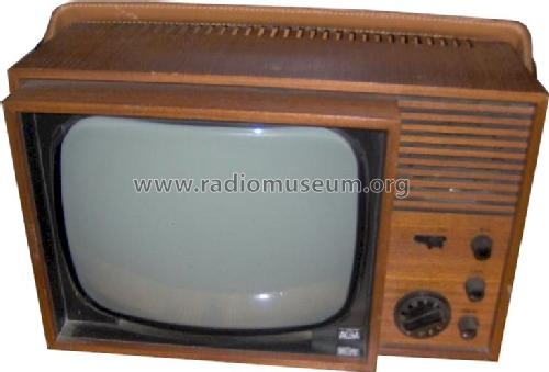 4510; AGA and Aga-Baltic (ID = 671994) Television