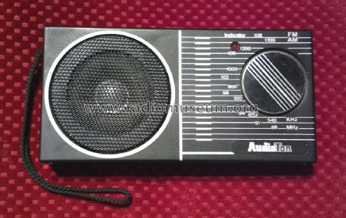 AM/FM Radio ; AudioTon Grünwald (ID = 1824558) Radio