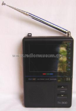 LCD Pocket Color Television TV-3100; CASIO Computer Co., (ID = 1727066) Television