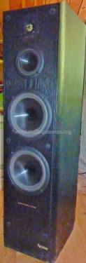 Reference 60; Infinity Systems Inc (ID = 1870678) Speaker-P