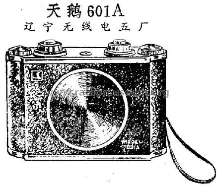Tian'e 天鹅 601A; Liaoning No.5 辽宁... (ID = 814813) Radio