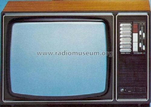 Electronic Color AC6113; Rank-Arena, Horsens (ID = 422462) Television