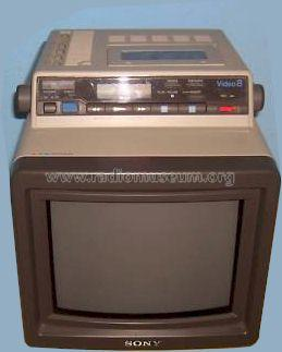 Color Video Monitor