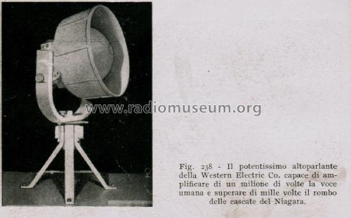 Powerful Loudspeaker ; Western Electric (ID = 2622903) Speaker-P
