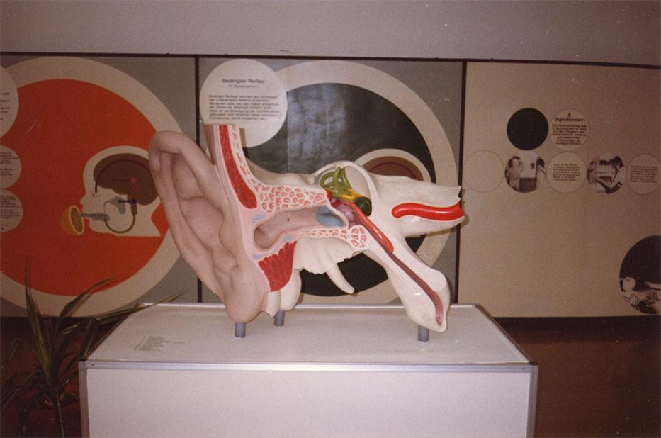 Рисунок о музее гигиены