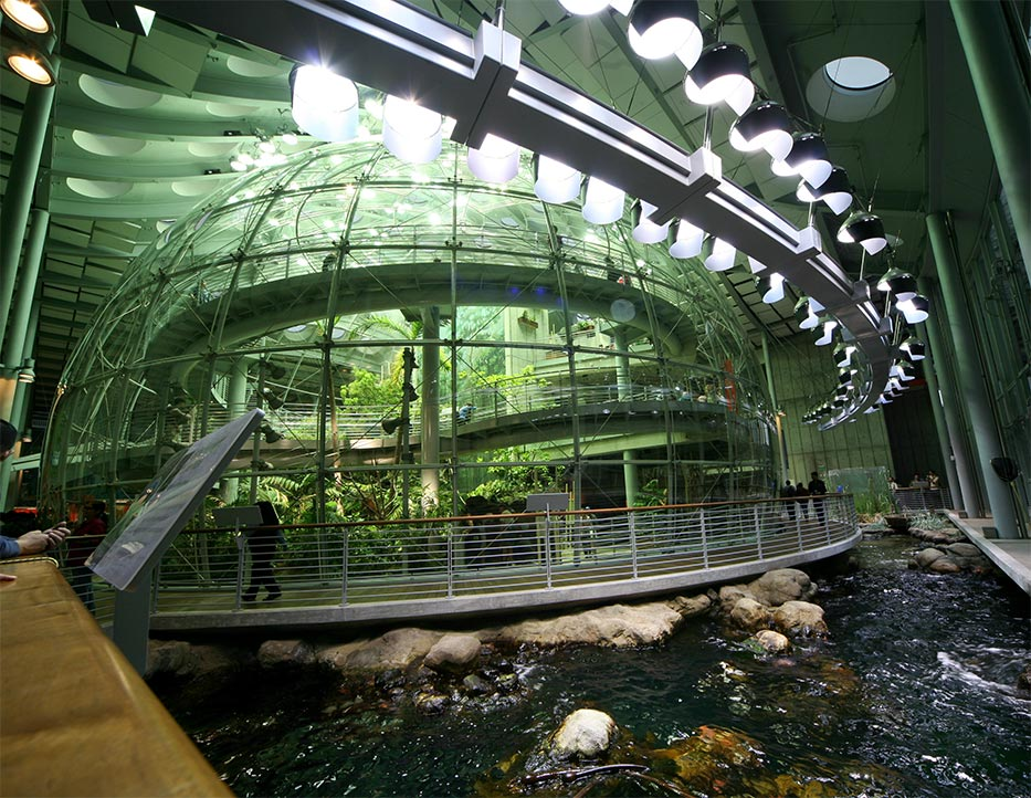 California academy of sciences museum finder guide radi for San francisco new museum